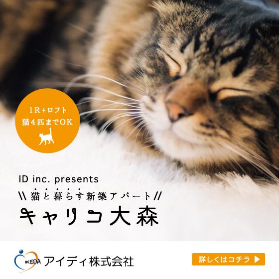 猫と暮らす新築アパート キャリコ大森